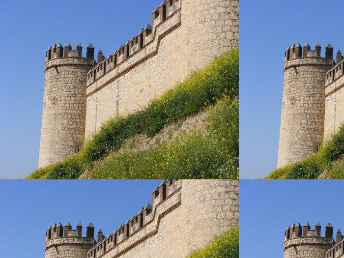 Tapeta Pixerstick Castillo de Maqueda - Památky