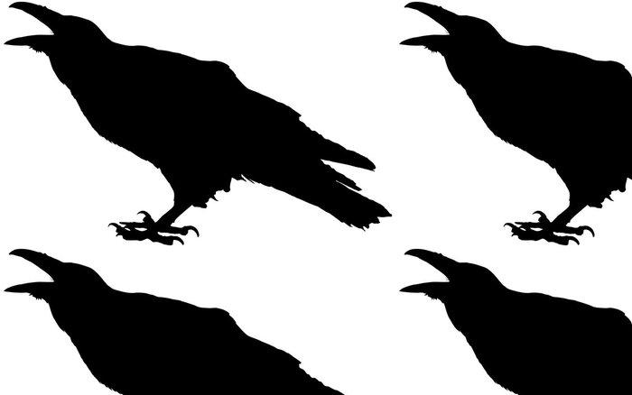 Tapeta Pixerstick Cawing raven - Přírodní krásy