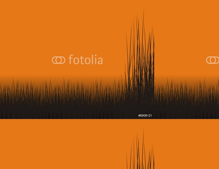 Vinylová Tapeta Cazando Patos - Pozadí