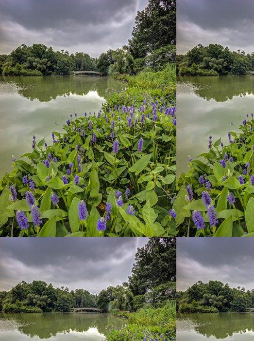 Tapeta Pixerstick Central Park, New York City - Amerika
