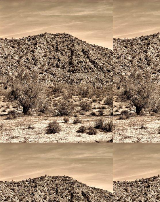 Tapeta Pixerstick Centrální Arizona Desert - Pouště