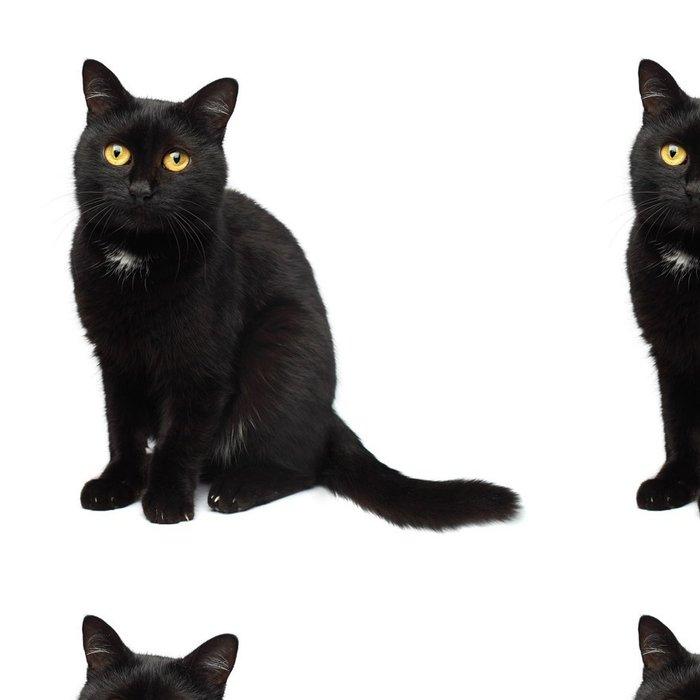 Tapeta Pixerstick Černá kočka - Savci