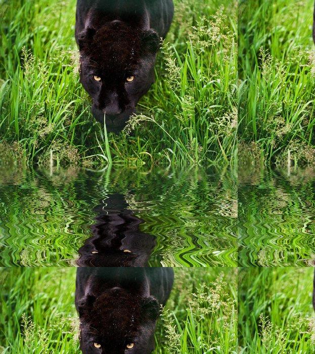 Tapeta Pixerstick Černý jaguár Panthera Onca plíží přes vysoké trávě odráží - Savci