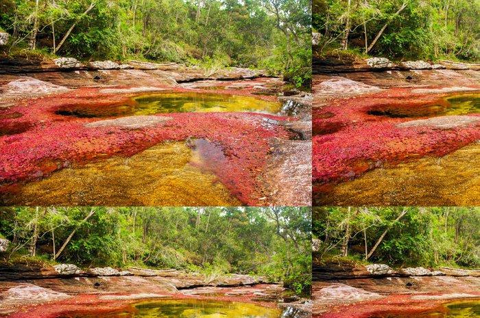 Tapeta Pixerstick Červená a Žlutá řeka v Kolumbii - Amerika