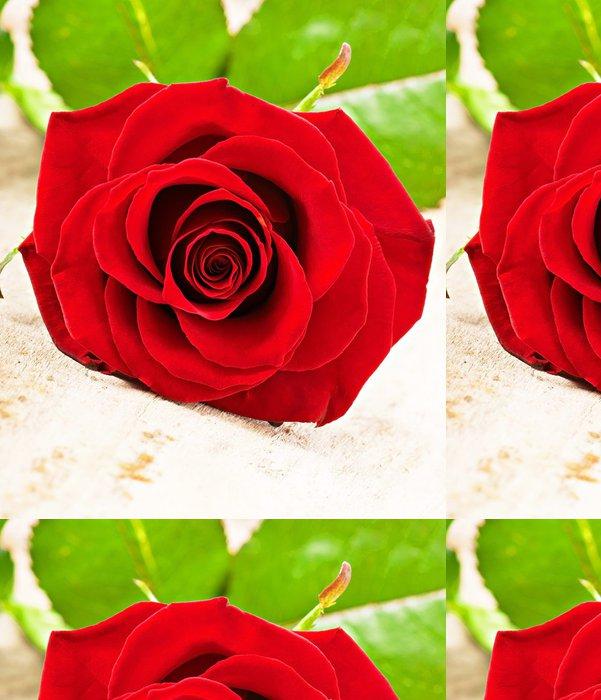 Tapeta Pixerstick Červená růže - Prodej