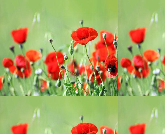 Tapeta Pixerstick Červené květy máku v poli - Témata
