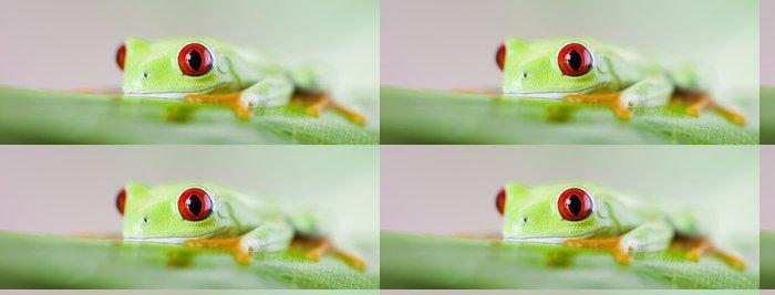 Vinylová Tapeta Červené oči stromová žába - Ostatní Ostatní