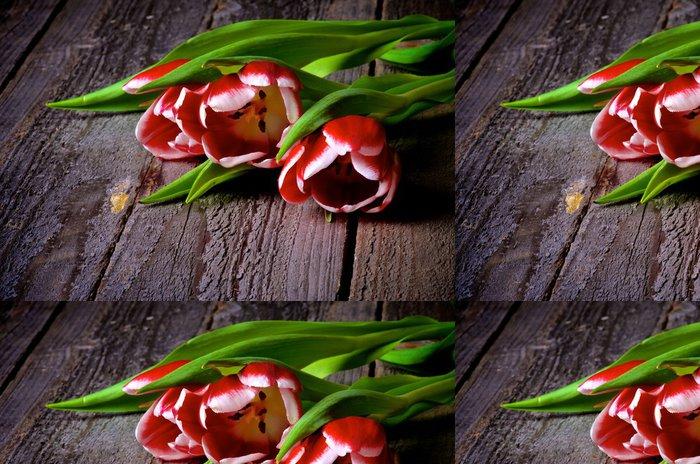 Tapeta Pixerstick Červeno-bílé tulipány - Mezinárodní svátky