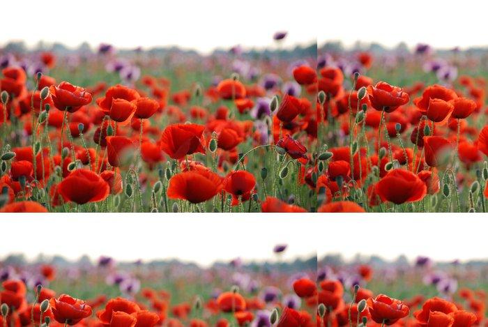 Tapeta Pixerstick Červený mák pole s mělkým dof - Květiny
