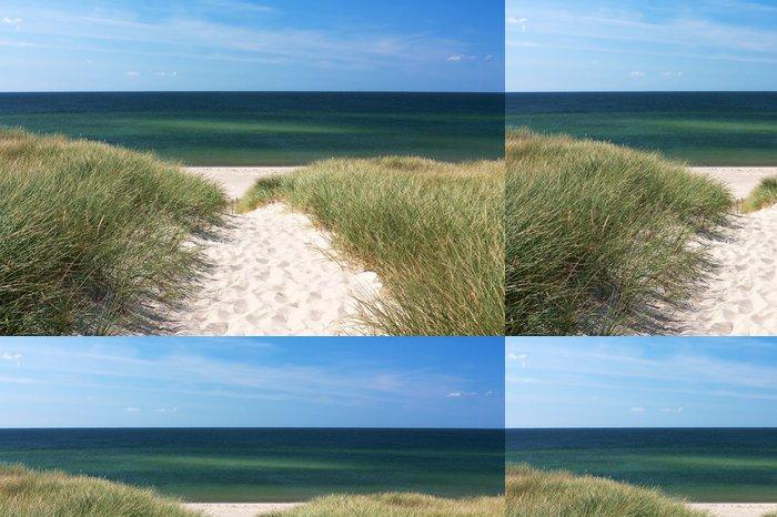 Tapeta Pixerstick Cesta na pláž přes duny v Kampen na ostrově Sylt - Německo