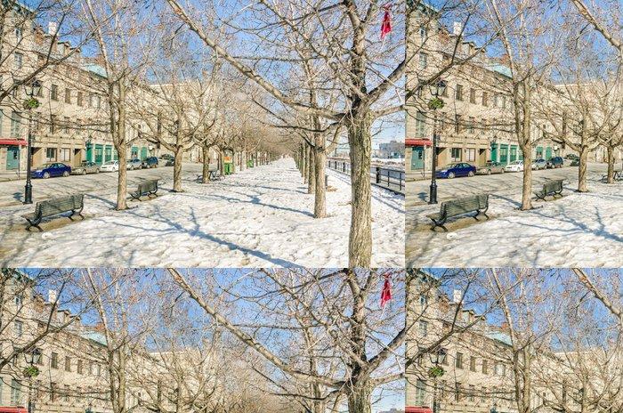 Tapeta Pixerstick Cesta pod sněhem přes holé stromy - Roční období