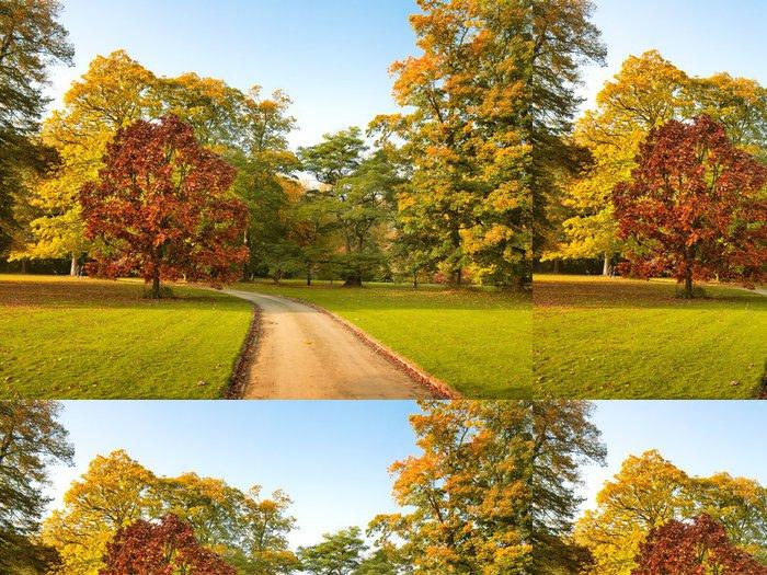 Tapeta Pixerstick Cesta v parku na podzim. Podzimní krajina. - Roční období