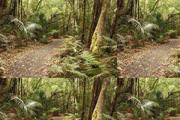 Vinylová Tapeta Cesta v Waitakere Ranges deštný prales - Témata