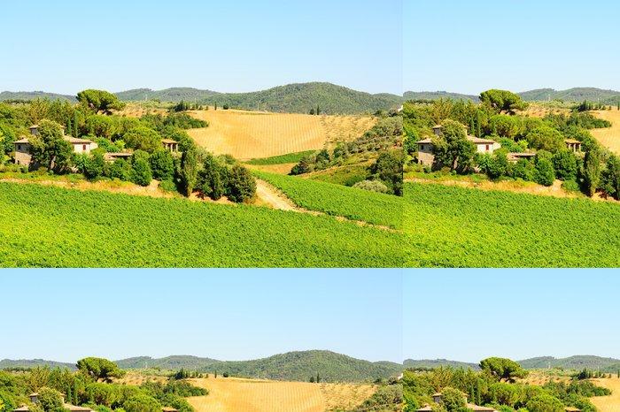 Vinylová Tapeta Chianti kraj - Zemědělství