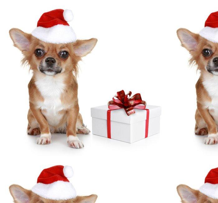 Tapeta Pixerstick Chihuahua v vánoční čepice a s dárkem - Mezinárodní svátky