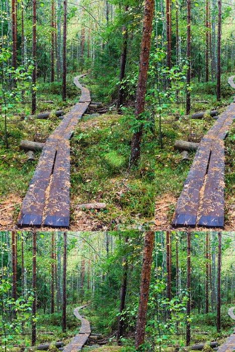 Tapeta Pixerstick Chodník v lese - Roční období