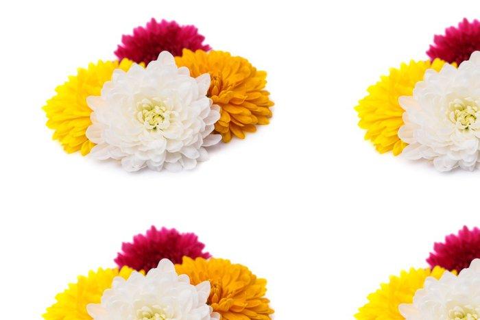Vinylová Tapeta Chryzantéma - Květiny