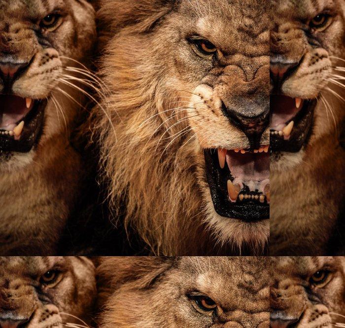 Tapeta Pixerstick Close-up shot dvou řvoucí lev - Témata