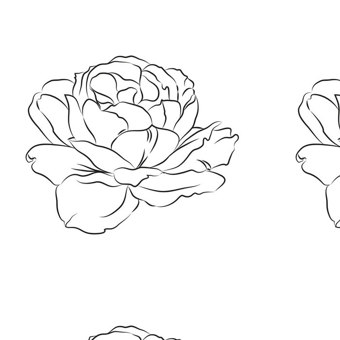Tapeta Pixerstick Contour růže. - Pozadí