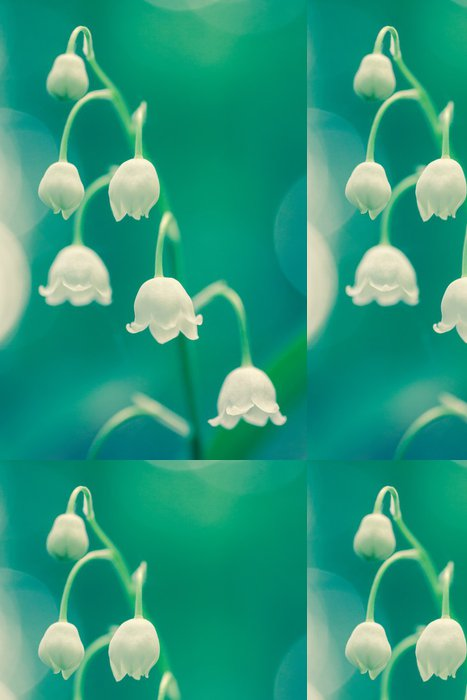 Tapeta Pixerstick Convallaria majalis - Květiny