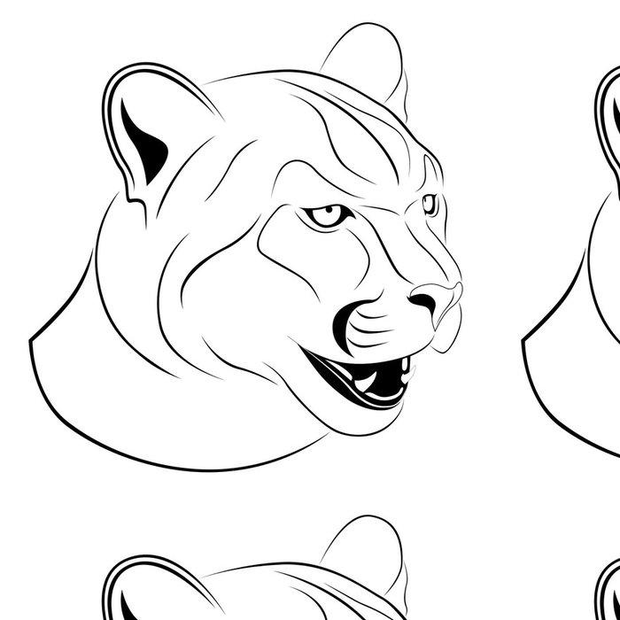 Tapeta Pixerstick Cougar tetování - Savci