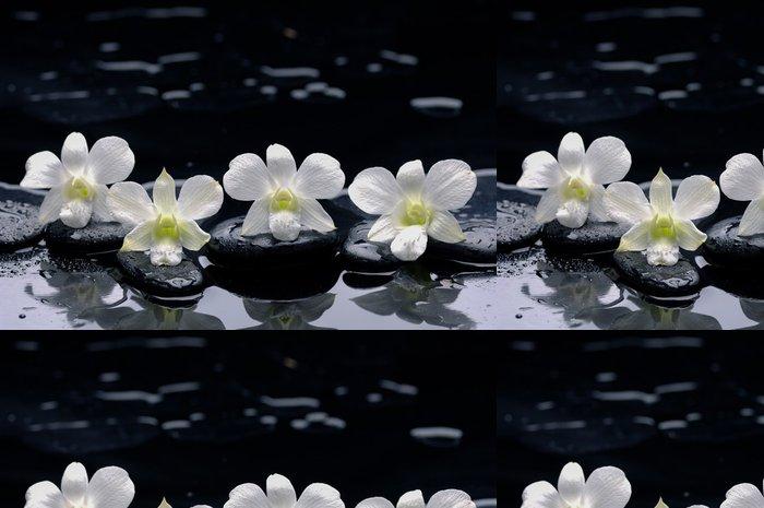 Tapeta Pixerstick Čtyři Bílá orchidej s kameny a mokré pozadí - Životní styl, péče o tělo a krása