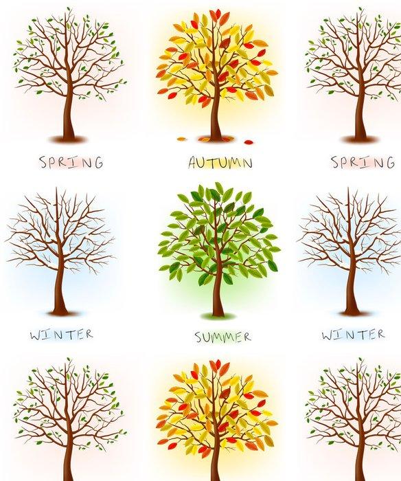 Tapeta Pixerstick Čtyři roční období - jaro, léto, podzim, zima. Umění stromy - Nálepka na stěny