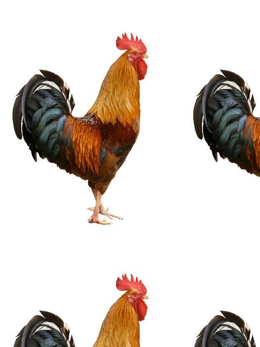 Tapeta Pixerstick Čurák - Ptáci
