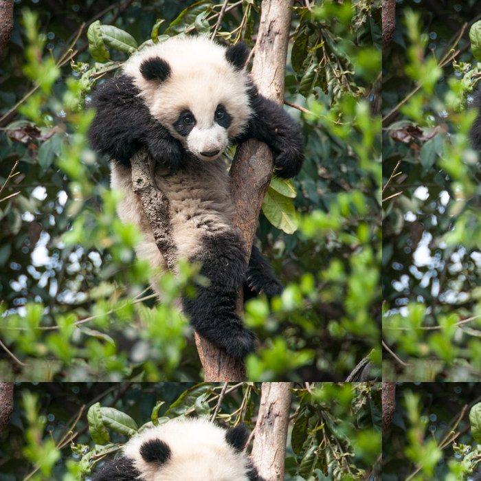 Tapeta Pixerstick Cute panda - Témata