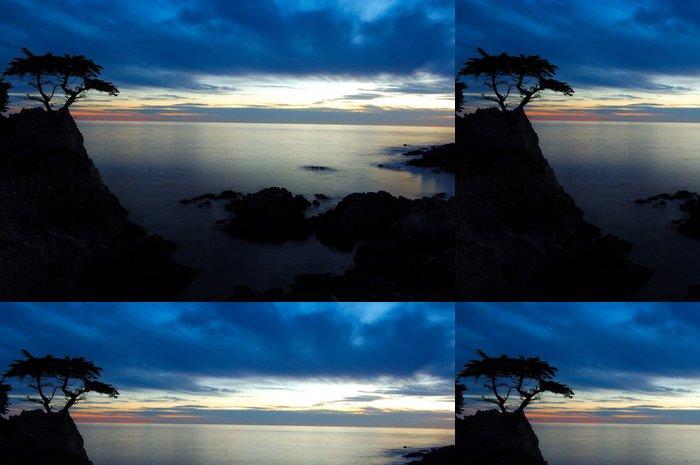 Tapeta Pixerstick Cypřiš při západu slunce - Voda