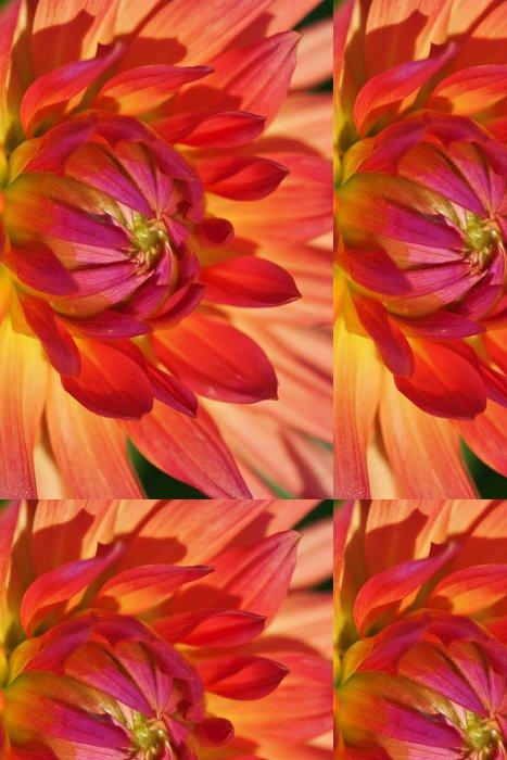 Tapeta Pixerstick Dahlia květiny - Roční období
