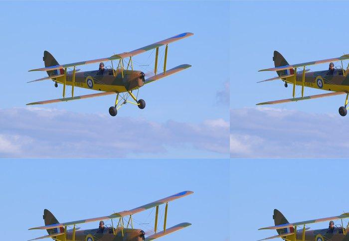 Tapeta Pixerstick De Havilland DH-82 Tiger Moth - Vzduch