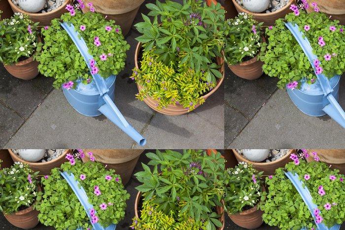 Tapeta Pixerstick Dekorace auf der Terrasse mit alter Gießkanne und Blumentöpfen - Domov a zahrada