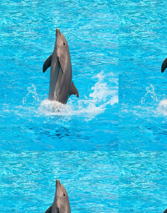 Tapeta Pixerstick Delfín - Delfíni