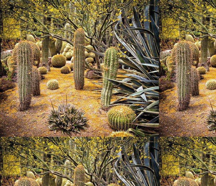 Vinylová Tapeta Desert Garden - Pouště