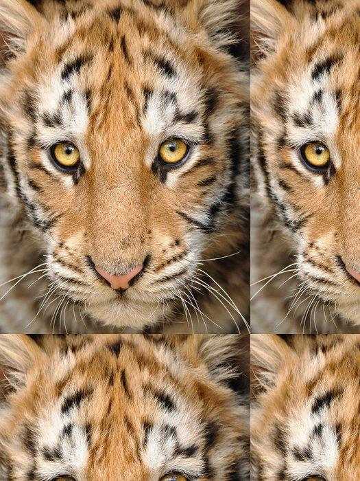 Tapeta Pixerstick Detailní Dítě tygra hlava - Témata