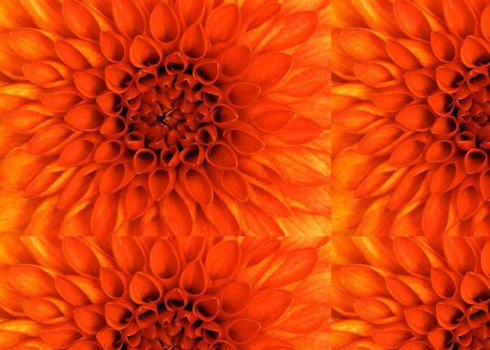 Tapeta Pixerstick Detailní květ - Květiny