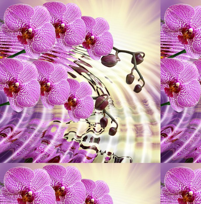 Tapeta Pixerstick Detailní záběr na květ orchideje - Témata