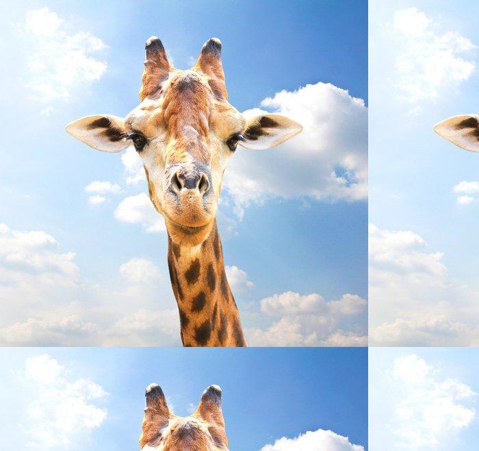 Tapeta Pixerstick Detailním portrét žirafa na modrém pozadí oblohy. - Témata