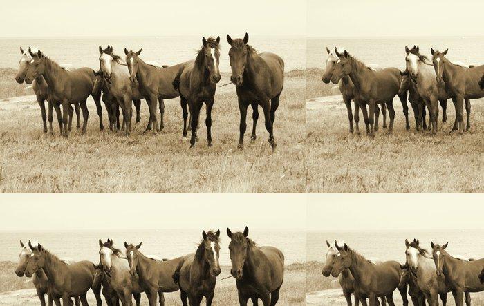 Tapeta Pixerstick Divocí koně na pláži - Témata