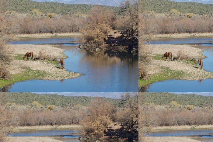 Tapeta Pixerstick Divocí koně na Salt River Arizona - Savci