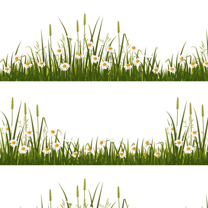Tapeta Pixerstick Divoká květina louka, izolovaných na bílém pozadí - Venkov