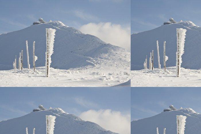 Tapeta Pixerstick Dlouhá cesta na hory pokryté sněhem - Hory