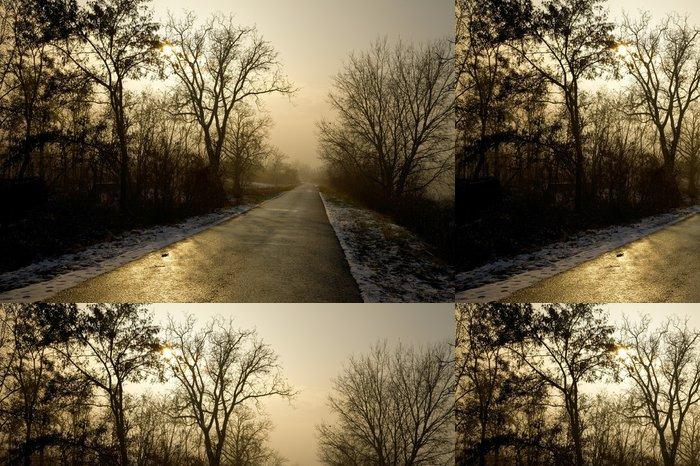 Tapeta Pixerstick Dlouhá cesta - Lesy