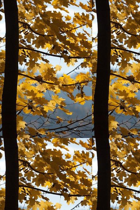 Tapeta Pixerstick Dojem z listí a podzimních barev - Roční období