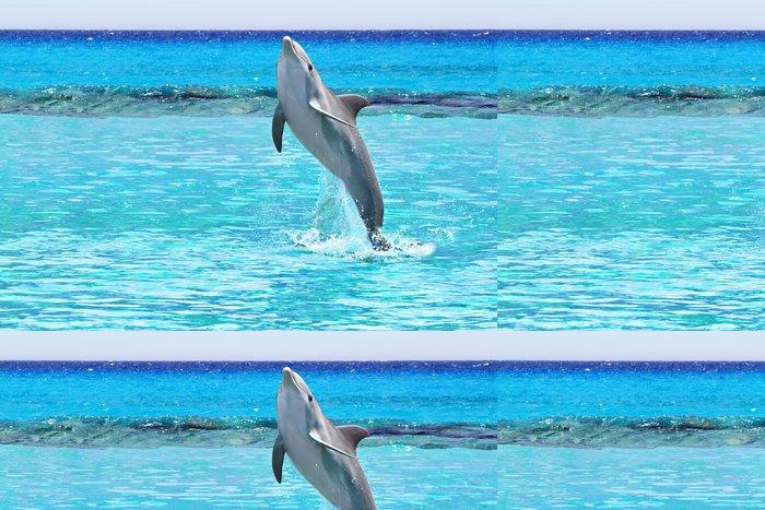 Tapeta Pixerstick Dolphin skákání v Karibském moři v Mexiku - Témata