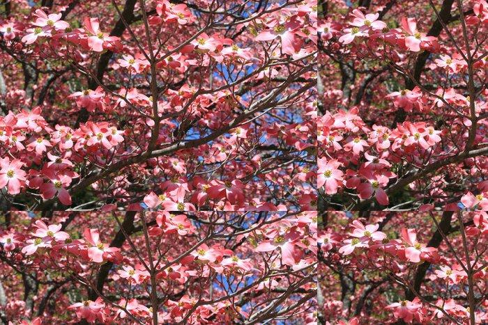 Tapeta Pixerstick Dřín v květu - Květiny