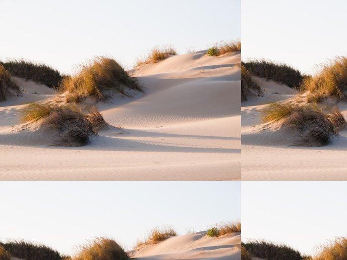 Vinylová Tapeta Duna na pláži - Pouště