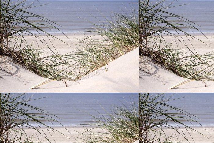 Tapeta Pixerstick Duny na pláži - Voda