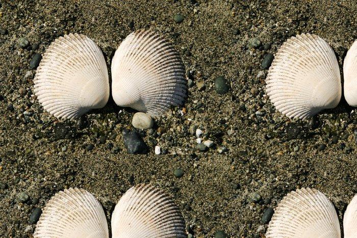 Tapeta Pixerstick Dvě škeble mušle - Vodní a mořský život